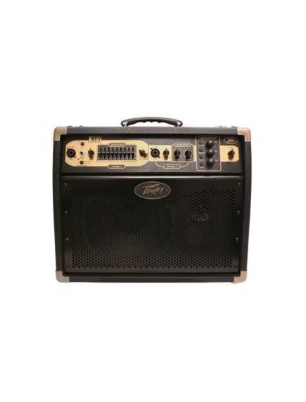 Peavey Ecoustic E110 with Footcontroller